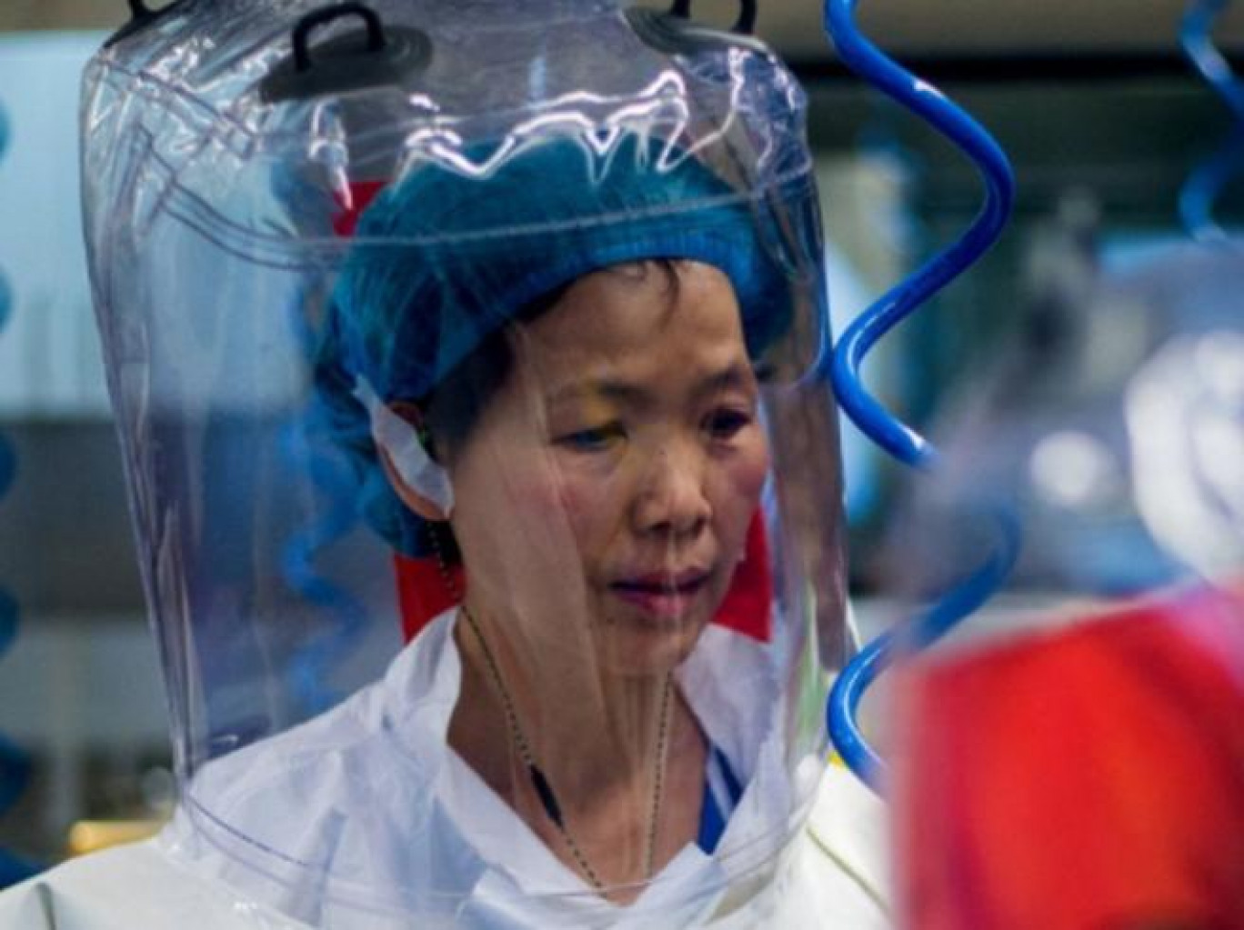 """Shi Zhengli, la virologa """"Bat Woman"""": «Il coronavirus non è partito da Wuhan, Trump chieda scusa»"""