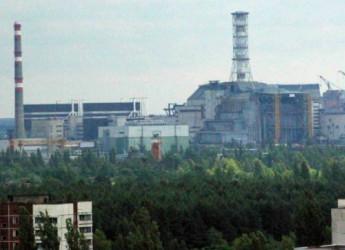 """Chernobyl, scoperto nel reattore nucleare un fungo che protegge dalle radiazioni: """"È la chiave per vivere su Marte"""""""