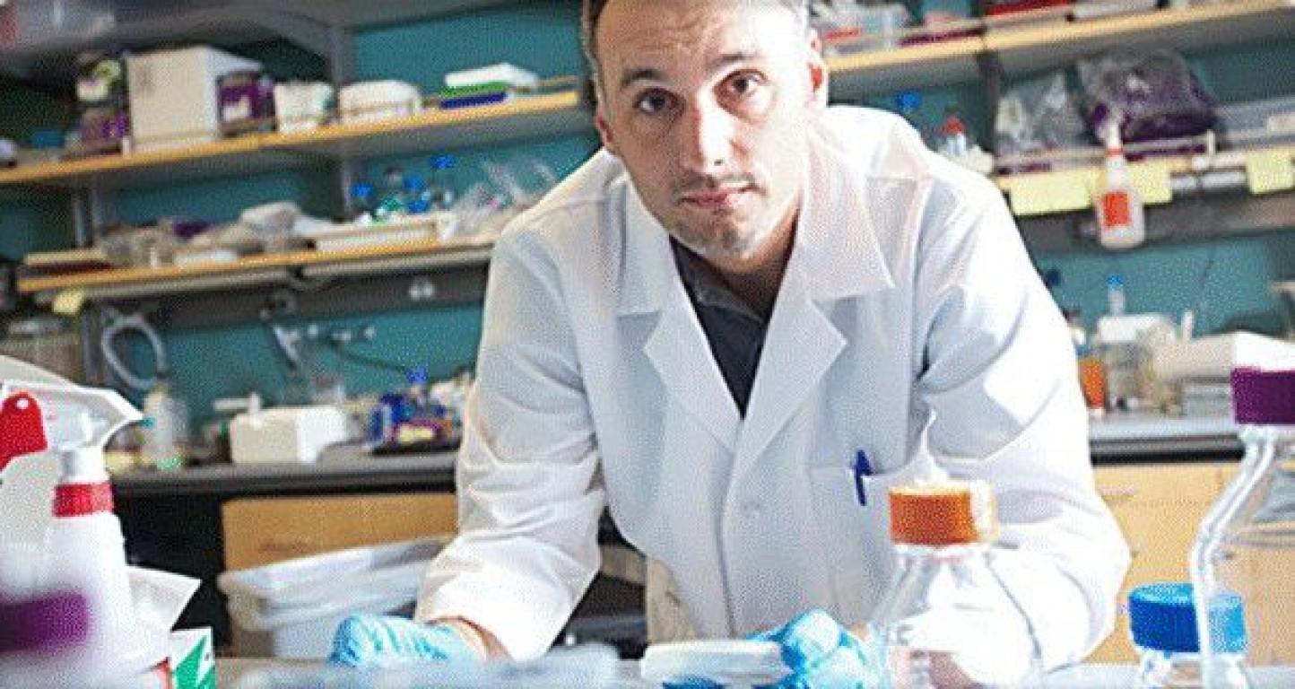 Scienziati scoprono che il digiuno attiva le cellule staminali nel rigenerare il nostro corpo
