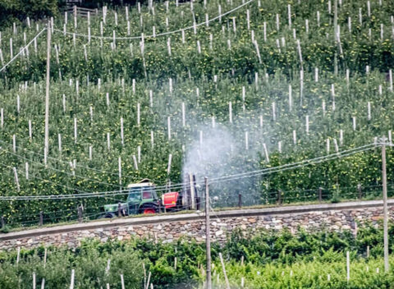 A processo per aver denunciato il massiccio uso di pesticidi: accade a Bolzano